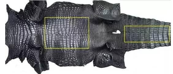 鳄鱼皮表带怎么选择-如何分辨真假