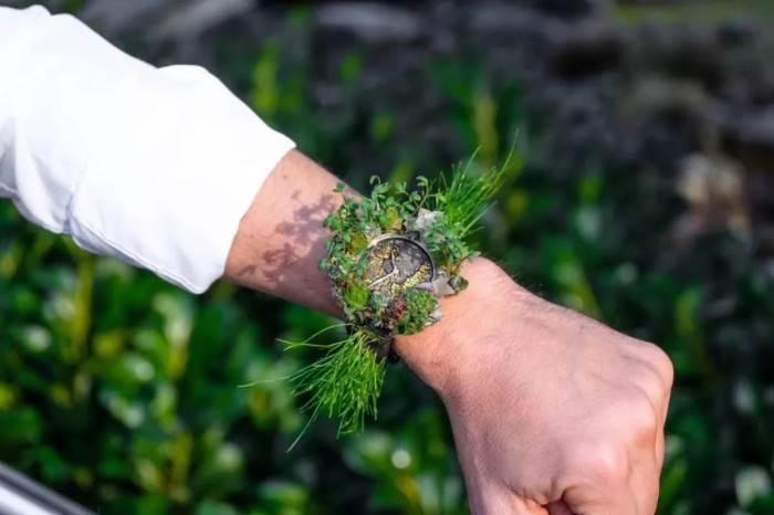 绿化腕表-亨利慕时今年的新款「哗众取宠」 第5张
